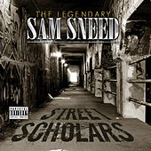 Street Scholars by Sam Sneed