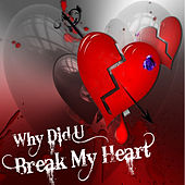 Why Did You Break My Heart by Various Artists