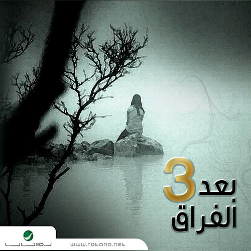 Baad Al Foura 3 by Various Artists