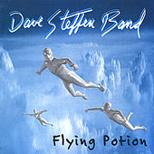 Flying Potion by Dave Steffen Band