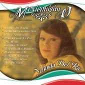 Mexicanisimo by Yolanda Del Rio