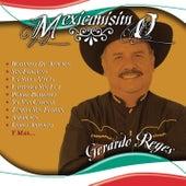 Mexicanisimo by Gerardo Reyes