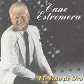 El Nino De Oro by Cano Estremera