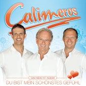 Du bist mein schönstes Gefühl by Calimeros
