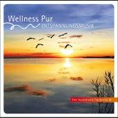 Cura - Entspannungsmusik, Eine musikalische Traumreise by Wellness Pur