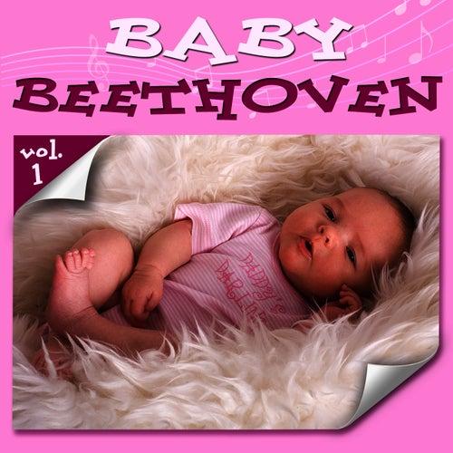 Baby Beethoven    Vol 1 by Ludwig van Beethoven