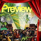 Preview Riddim by Various Artists