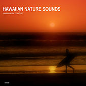Hawaiian Nature Sounds Collection - Hawaii Meditation and Relaxation Sounds of Nature by Hawaiian Music of Nature