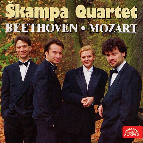Beethoven: String Quartet in E minor,