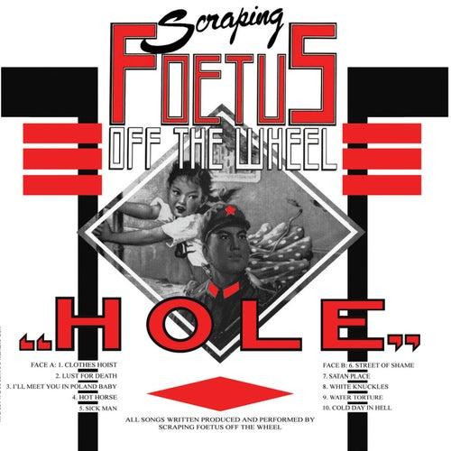 Hole by Foetus