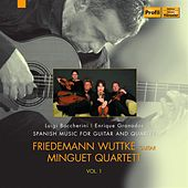 Spanish Music for Guitar and Quartet, Vol. 1 by Friedemann Wuttke