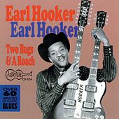 Two Bugs And A Roach by Earl Hooker
