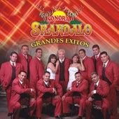 Grandes Exitos by Sonora Skandalo