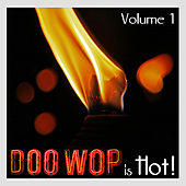 Doo Wop is Hot - Volume 1 by Various Artists