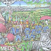 Meds Ep by Mt. Eden
