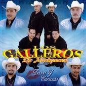 Besos Y Caricias by Los Galleros de Michoacan