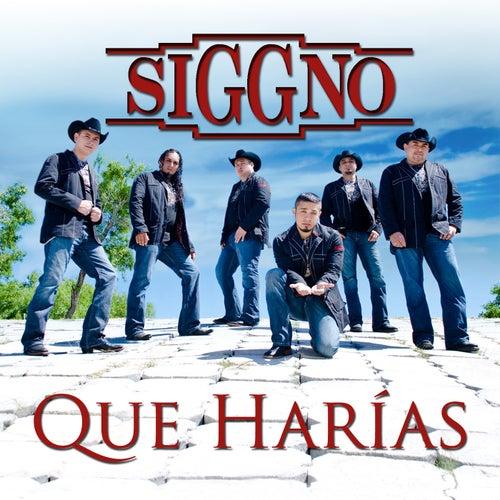 Que Harias by Siggno