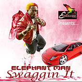 Swaggin It by Elephant Man