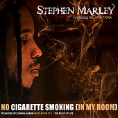 No Cigarette Smoking (In My Room) by Stephen Marley