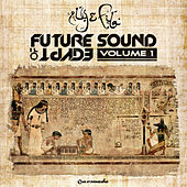 Future Sound Of Egypt - Volume 1 by Various Artists