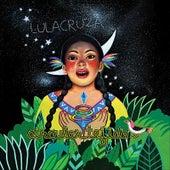 Circular Tejido by Lulacruza