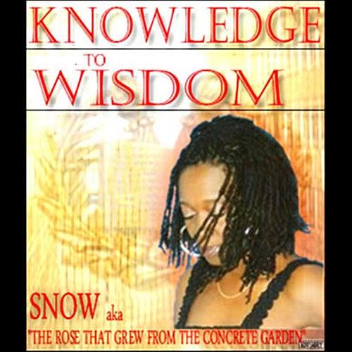 Knowledge To Wisdom by Snow