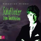 Schlaflieder zum Wachbleiben by Sebastian Krämer