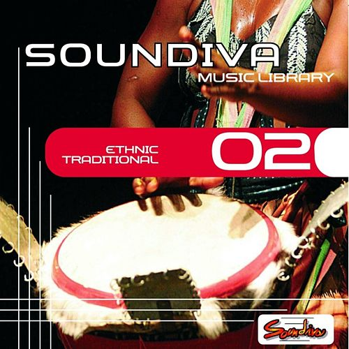 Ethnic Traditional, Vol.2 by Various Artists