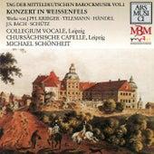 Tag der Mitteldeutschen Barockmusik, Vol. 1 by Various Artists