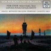 Krol: Von Werden und Vergehen von Various Artists