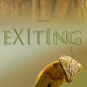 Exiting by Mantis
