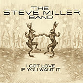 I Got Love If You Want It by Steve Miller Band