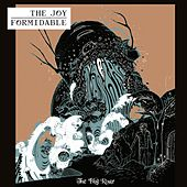 The Big Roar by The Joy Formidable
