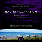 Syncsouls Baltic Moooods - Relaxation by the sea - Crashing Waves, Soaring Seagulls, Soothing Sounds by Torsten Abrolat