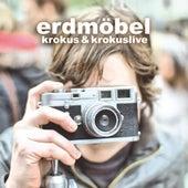 Krokus & Krokuslive by Erdmöbel