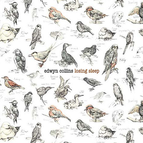 Losing Sleep by Edwyn Collins