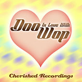 In Love With Doo Wop by Various Artists