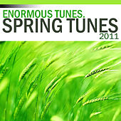 Spring Tunes 2011 by Various Artists