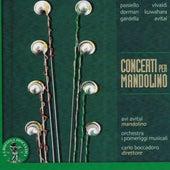 Paisiello, Vivaldi, Dorman, Kuwahara, Gardella, Avital: Concerti per mandolino by Various Artists