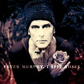 I Spit Roses by Peter Murphy