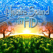 Nature Sound in HD by Nature Sounds in HD