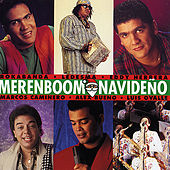 Merenboom Navideño by Various Artists