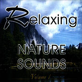 Relaxing Nature Sounds Vol. 1 by Studio Orchestra