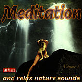 Meditation And Relax Nature Sounds by Studio Orchestra