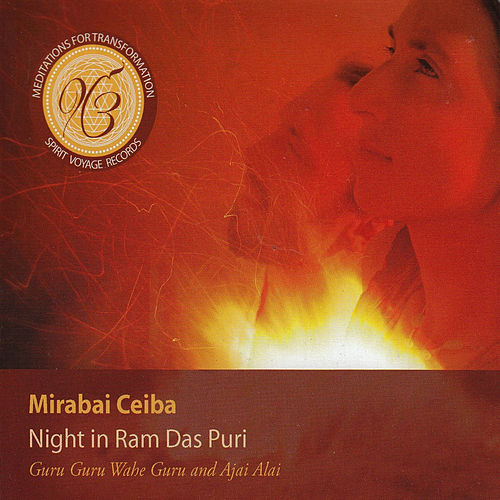 Night in Ram Das Puri by Mirabai Ceiba