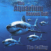The Calling by Col. Bruce Hampton