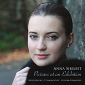 Pictures At An Exhibition by Anna Shelest