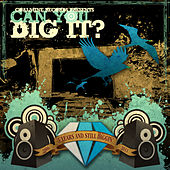 Can You Dig It? von Various Artists