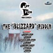 Blizzard Riddim von Various Artists