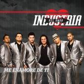 Me Enamore De Ti by Industria Del Amor